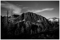 Larches and Mount Logan from Easy Pass at night, North Cascades National Park.  ( black and white)