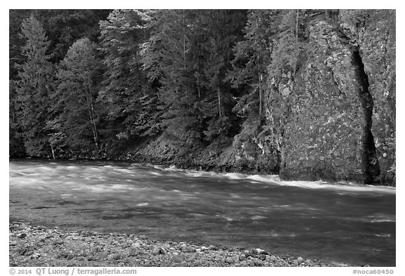 Stream near Gorge Lake, North Cascades National Park Service Complex.  (black and white)