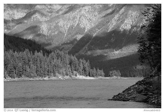 Water-level view of Ross Lake, North Cascades National Park Service Complex.  (black and white)