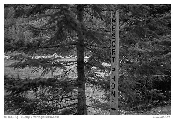 Sign pointing to phone used to call Ross Lake resort, North Cascades National Park Service Complex.  (black and white)