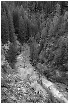 Agnes Creek from above, Glacier Peak Wilderness.  ( black and white)