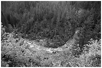 Bend of Agnes Creek from above in autumn, Glacier Peak Wilderness.  ( black and white)