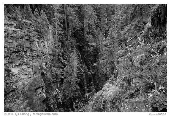 Waterfall, Agnes Gorge, Glacier Peak Wilderness.  (black and white)