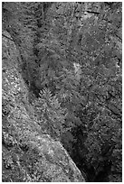 Agnes Gorge, Glacier Peak Wilderness.  ( black and white)