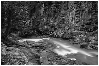 Agnes Creek in Agnes Gorge, Glacier Peak Wilderness.  ( black and white)