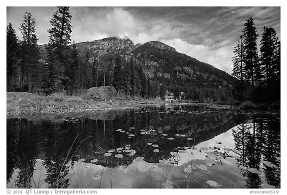 McGregor Mountain reflected in Coon Lake, North Cascades National Park Service Complex.  (black and white)