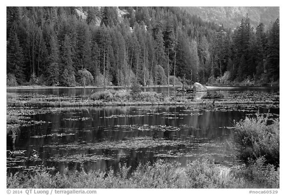 Coon Lake reflections, Stehekin, North Cascades National Park Service Complex.  (black and white)