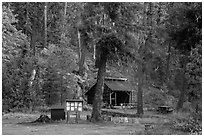 High Bridge campground, North Cascades National Park.  ( black and white)
