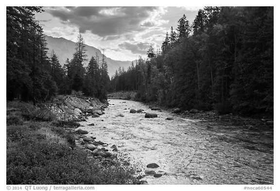 Stehekin River, looking down valley, North Cascades National Park Service Complex.  (black and white)