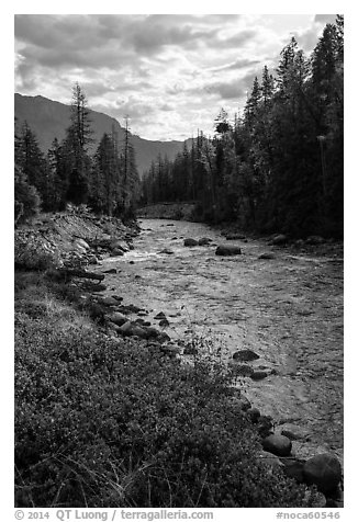 Stehekin River flows in Stehekin Valley, North Cascades National Park Service Complex.  (black and white)