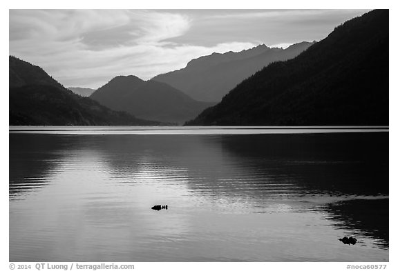Lake Chelan reflections, Stehekin, North Cascades National Park Service Complex.  (black and white)