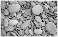 Round pebbles on beach. Olympic National Park ( black and white)