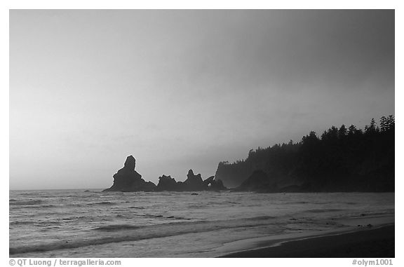 Sunset, Shi-Shi Beach. Olympic National Park (black and white)
