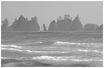 Waves and seastacks, Shi-Shi Beach. Olympic National Park, Washington, USA. (black and white)