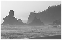 Sea stacks and arch on Shi-Shi Beach. Olympic National Park, Washington, USA. (black and white)