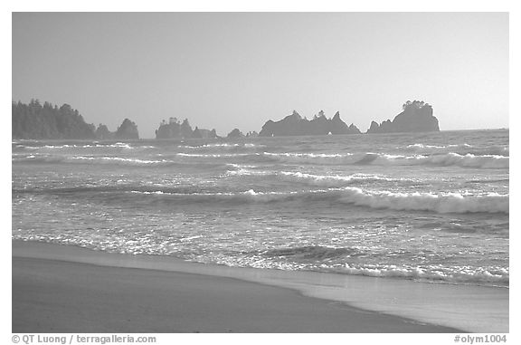 Seastacks, Shi-Shi Beach. Olympic National Park (black and white)