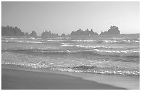 Seastacks, Shi-Shi Beach. Olympic National Park, Washington, USA. (black and white)