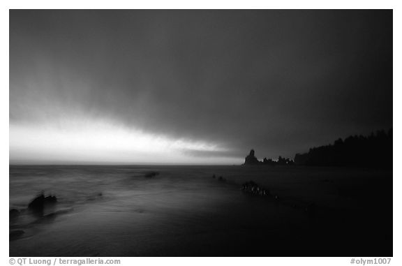 Shi-shi beach, dusk. Olympic National Park (black and white)