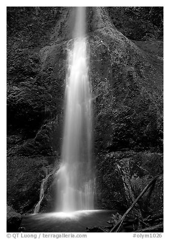 Marymere falls, spring. Olympic National Park (black and white)