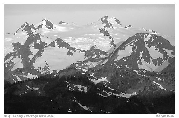 Mount Olympus at sunrise. Olympic National Park (black and white)