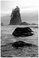 Rocks, seastacks and surf, Second Beach. Olympic National Park, Washington, USA. (black and white)