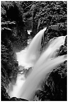 Sol Duc falls. Olympic National Park, Washington, USA. (black and white)
