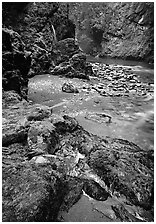 Mossy rocks and stream. Olympic National Park, Washington, USA. (black and white)