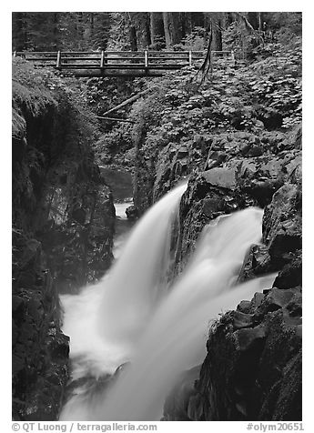Sol Duc falls and wooden footbridge. Olympic National Park (black and white)