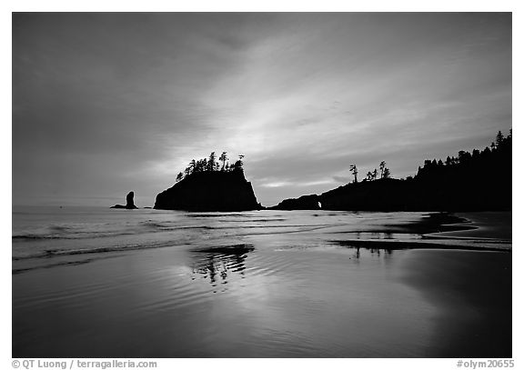 Seastacks reflected at sunset on wet sand, Second Beach. Olympic National Park (black and white)