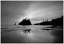 Seastacks reflected at sunset on wet sand, Second Beach. Olympic National Park, Washington, USA. (black and white)