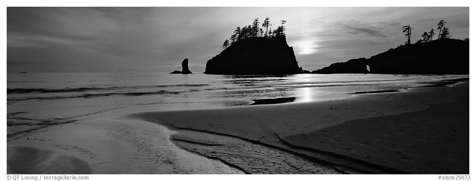Stream and beach at sunset. Olympic National Park (black and white)