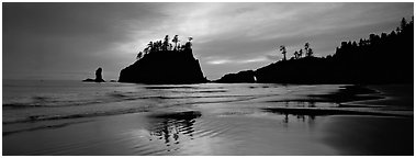 Second Beach with wet sand reflections. Olympic National Park (Panoramic black and white)