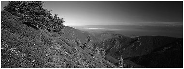 View over marine straight from mountains. Olympic National Park (Panoramic black and white)