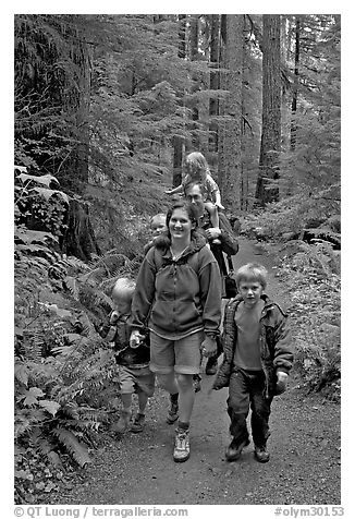 Family walking on forest trail. Olympic National Park (black and white)