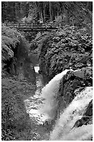 Sol Duc waterfall and bridge. Olympic National Park, Washington, USA. (black and white)