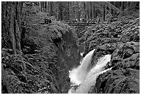 Soleduc falls and bridge. Olympic National Park, Washington, USA. (black and white)