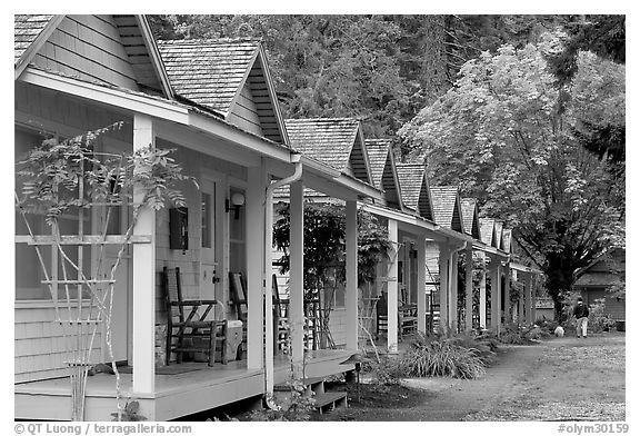 Cabins of Crescent Lake Lodge. Olympic National Park (black and white)