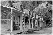 Cabins of Crescent Lake Lodge. Olympic National Park, Washington, USA. (black and white)