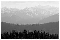 Hazy view of ridges and Olympic mountains. Olympic National Park, Washington, USA. (black and white)