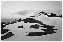 Neve on hill at dusk near Obstruction Point. Olympic National Park, Washington, USA. (black and white)