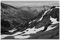 Badger Valley. Olympic National Park, Washington, USA. (black and white)