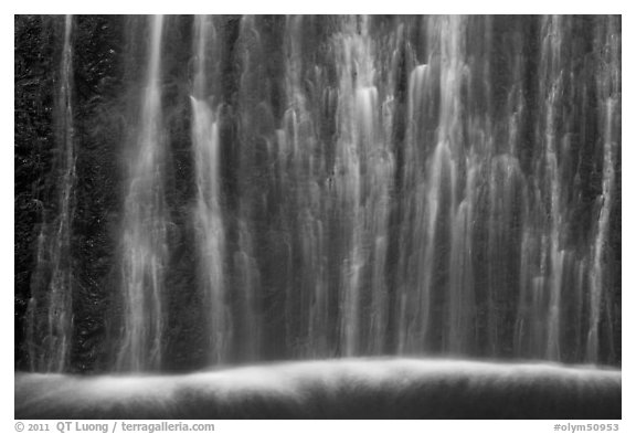 Ethereal waters, base of Marymere Fall. Olympic National Park (black and white)