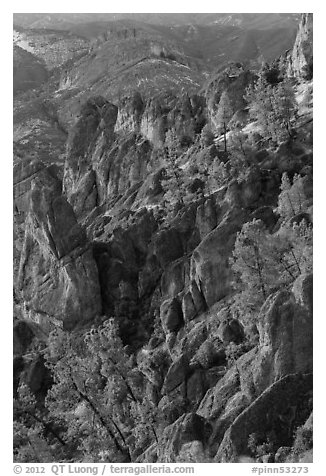 Rocky spires at sunset. Pinnacles National Park (black and white)