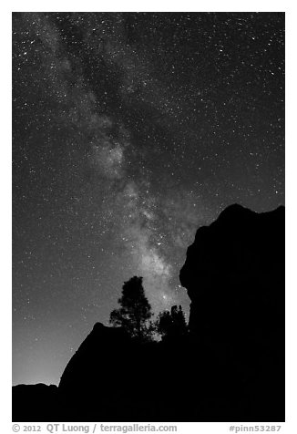 Rocks and pine trees profiled against starry sky with Milky Way. Pinnacles National Park (black and white)