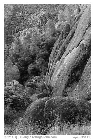 Cliff and Mediterranean chaparral. Pinnacles National Park (black and white)