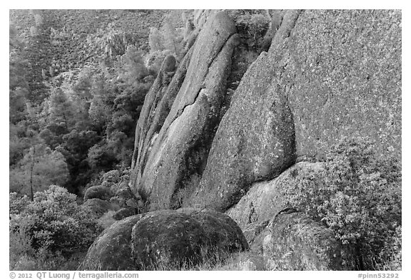 Rhyolite Cliff. Pinnacles National Park (black and white)