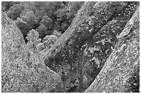Lichen-covered volcanic rock finns. Pinnacles National Park ( black and white)