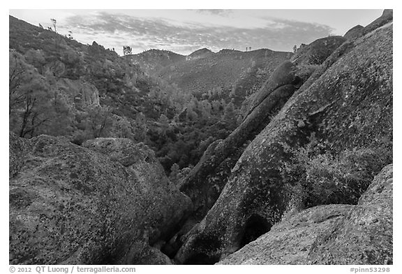 Condor Gulch, early morning. Pinnacles National Park (black and white)