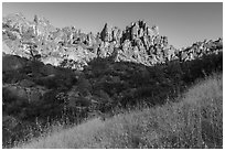 Summer grasses and pinnacles, early morning. Pinnacles National Park ( black and white)