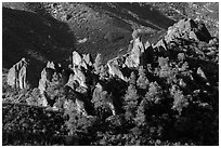 Pine trees and pinnacles. Pinnacles National Park, California, USA. (black and white)